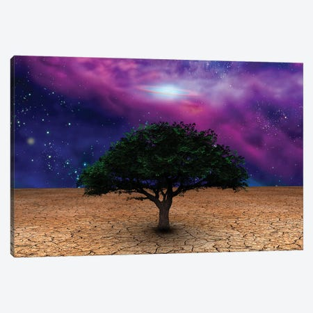 Green Tree In Arid Land With Galactic Disk In Night Sky Canvas Print #RLF19} by Bruce Rolff Canvas Wall Art