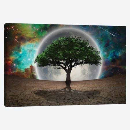 Green Tree In Arid Land Full Moon In The Vivid Sky 3D Rendering Canvas Print #RLF246} by Bruce Rolff Canvas Art Print