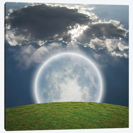 Giant Bright Moon, Green Field Canvas Print #RLF249} by Bruce Rolff Canvas Artwork
