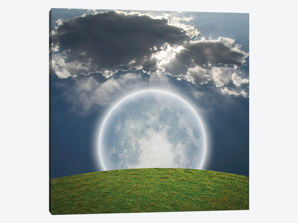 Giant Bright Moon, Green Field by Bruce Rolff 1-piece Canvas Art Print