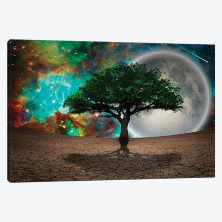 Green Tree Of Life In Arid Land Full Moon In Vivid Starry Sky Canvas Print #RLF326} by Bruce Rolff Canvas Artwork