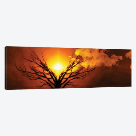 Mystic Tree Of Life Moon In Cloudy Sky Sunset Or Sunrise Canvas Print #RLF83} by Bruce Rolff Canvas Print
