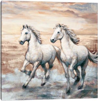 Running Horses I Canvas Art Print