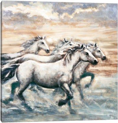 Running Horses II Canvas Art Print
