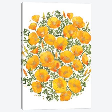 Watercolor California Poppies Bunch Canvas Print #RLZ240} by blursbyai Canvas Art Print