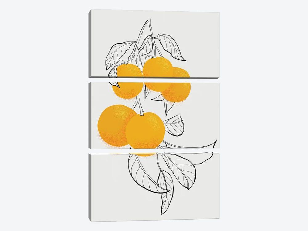 Mabel Oranges by blursbyai 3-piece Canvas Wall Art