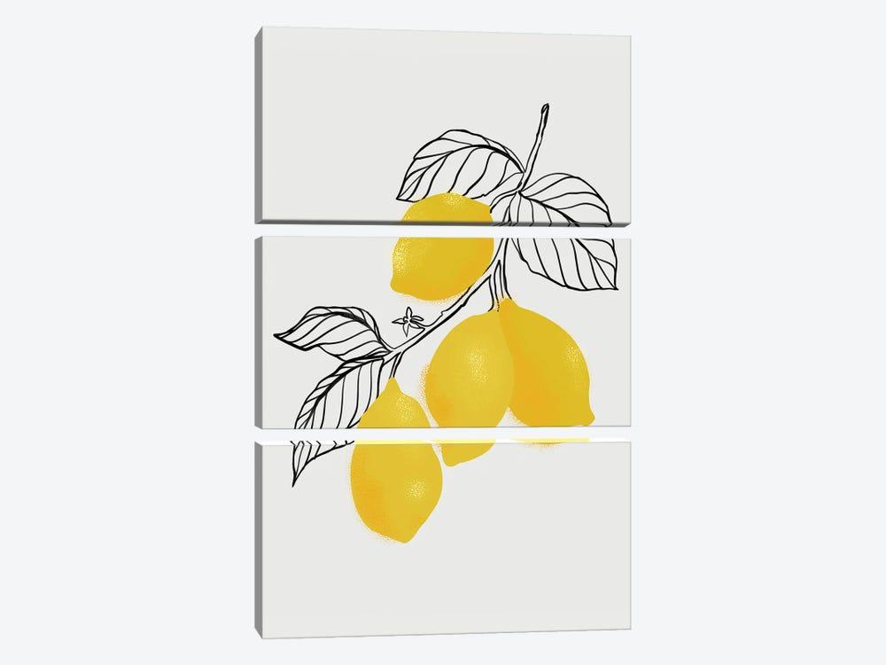 Lamya Lemons by blursbyai 3-piece Canvas Wall Art