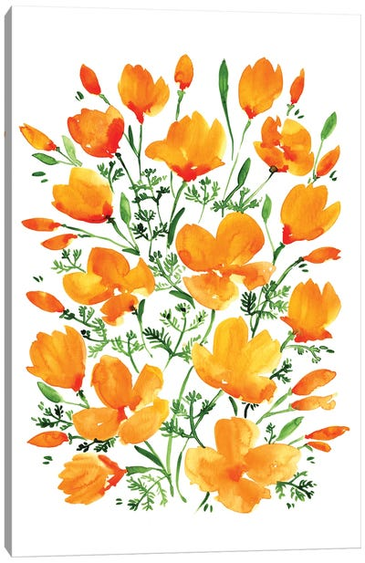 Watercolor California Poppies Canvas Art Print