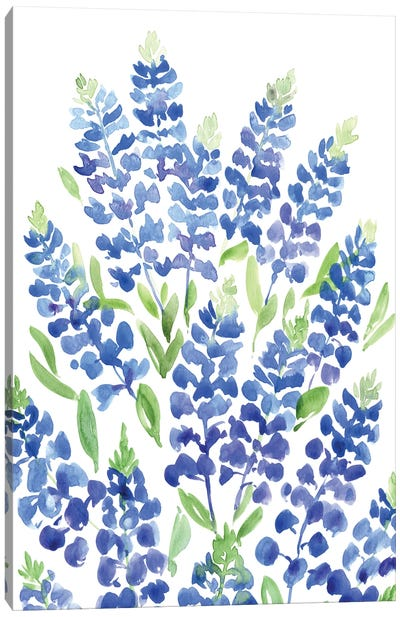 Bouquet Of Texas Bluebonnets Canvas Art Print