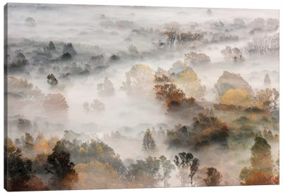 Autumns Canvas Art Print