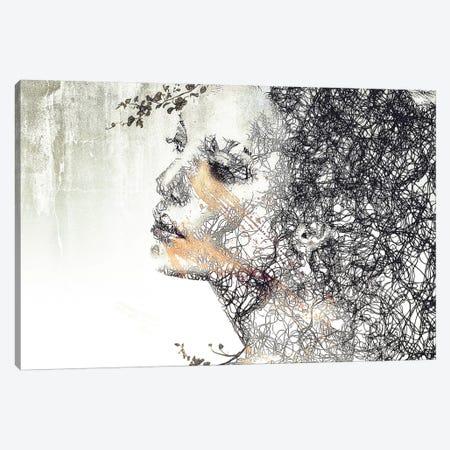 Evolution Canvas Print #RMB10} by Romain Bonnet Canvas Print