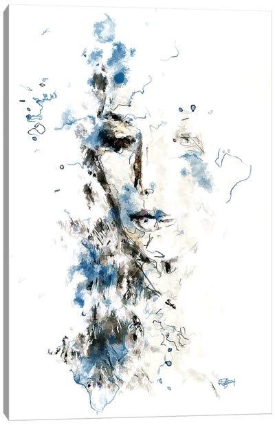 Envie De Ciel Bleu Canvas Art Print