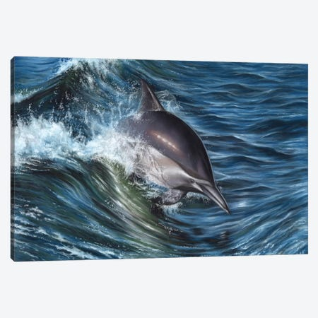 Dolphin Canvas Print #RMC10} by Richard Macwee Canvas Artwork