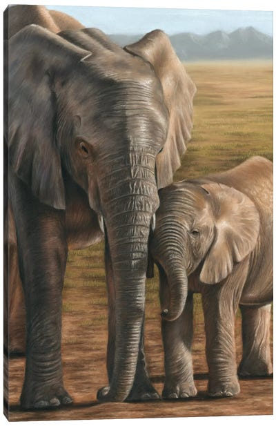 Elephant And Calf Canvas Art Print