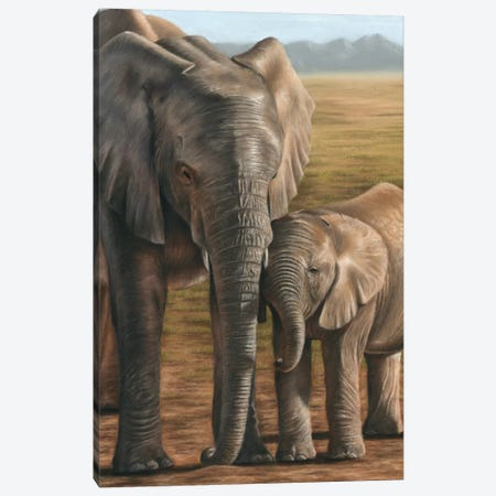 Elephant And Calf Canvas Print #RMC14} by Richard Macwee Canvas Print