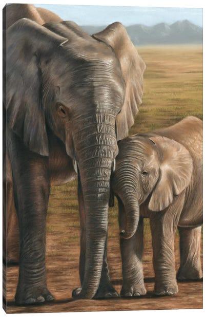 Elephant And Calf Canvas Art Print