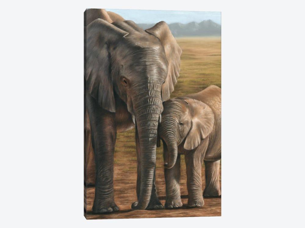 Elephant And Calf by Richard Macwee 1-piece Canvas Art Print