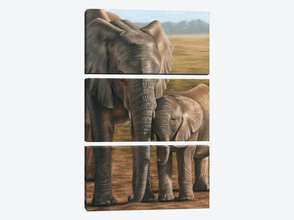 Elephant And Calf by Richard Macwee 3-piece Art Print