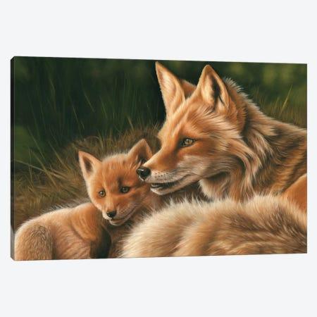 Fox And Cub Canvas Print #RMC15} by Richard Macwee Art Print