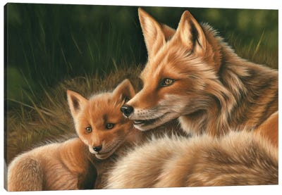 Fox And Cub Canvas Art Print