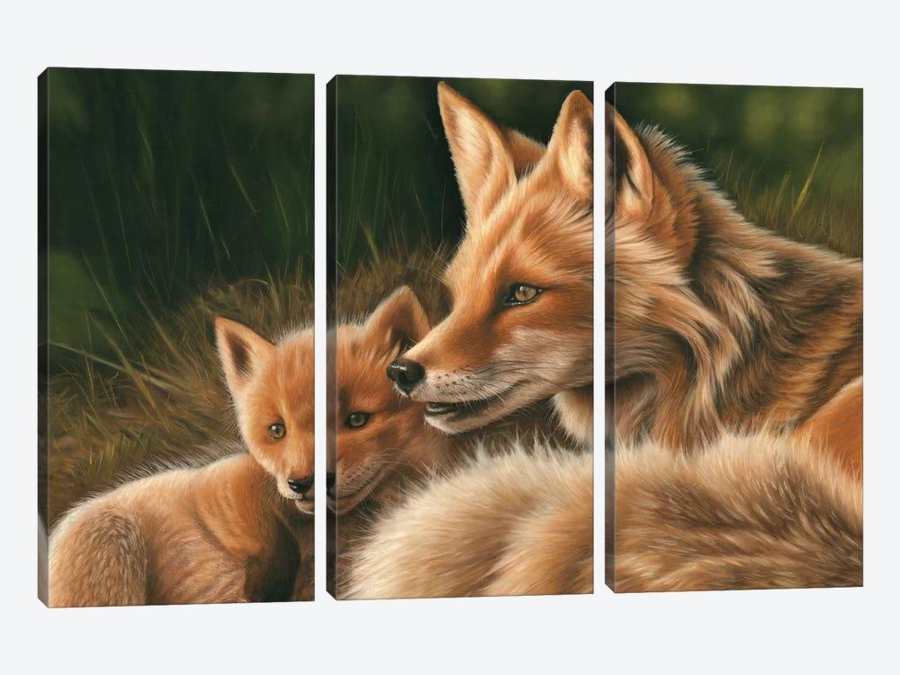 Fox And Cub by Richard Macwee 3-piece Canvas Artwork