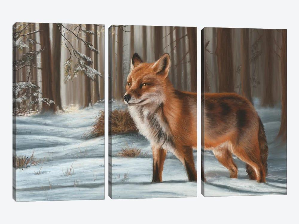 Fox In Snow by Richard Macwee 3-piece Canvas Artwork