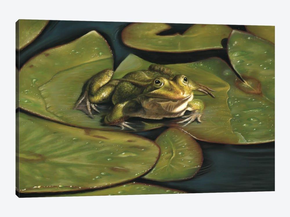 Green Frog by Richard Macwee 1-piece Canvas Artwork