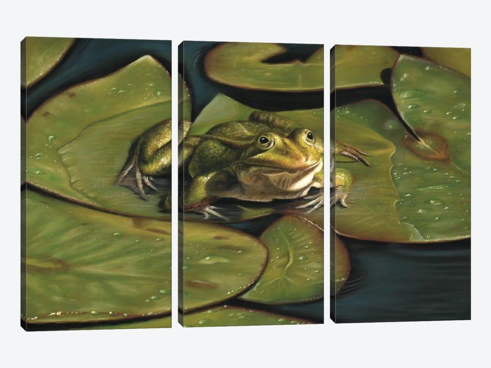 Green Frog by Richard Macwee 3-piece Canvas Artwork