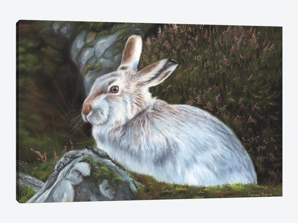 Hare by Richard Macwee 1-piece Canvas Art