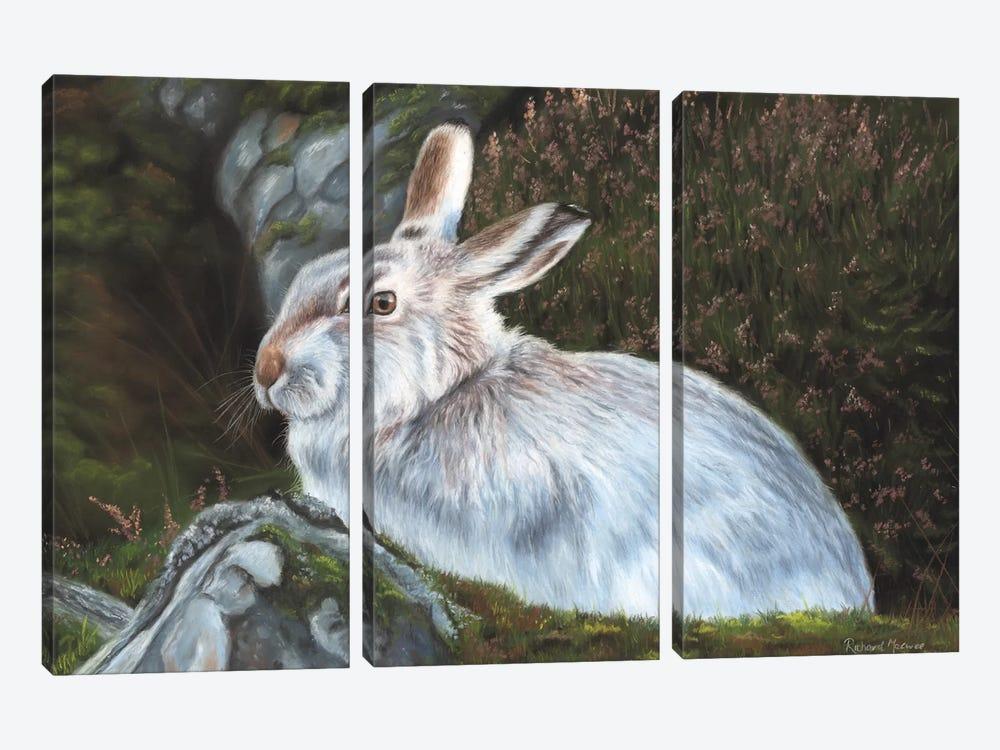 Hare by Richard Macwee 3-piece Canvas Art
