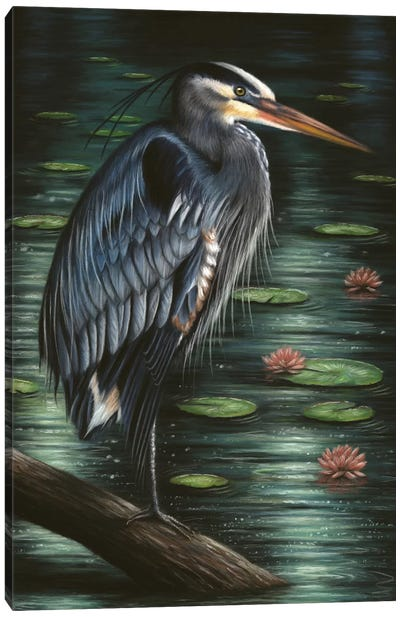 Heron Canvas Art Print