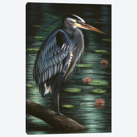 Heron Canvas Print #RMC23} by Richard Macwee Art Print