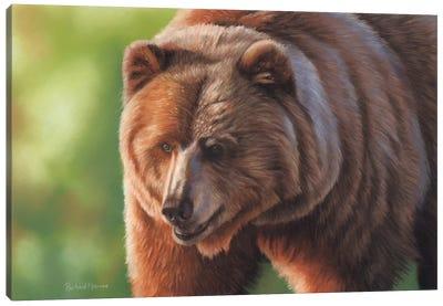 Kodiak Bear Canvas Art Print