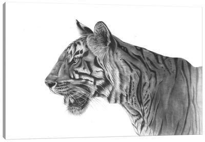 Bengal Tiger Canvas Art Print