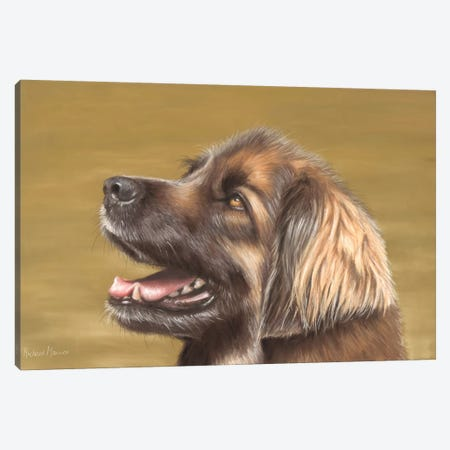 Leonberger Canvas Print #RMC30} by Richard Macwee Canvas Artwork