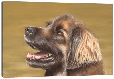 Leonberger Canvas Art Print