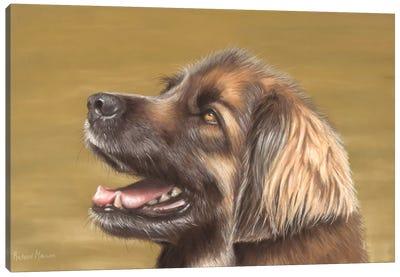 Leonberger Canvas Art Print