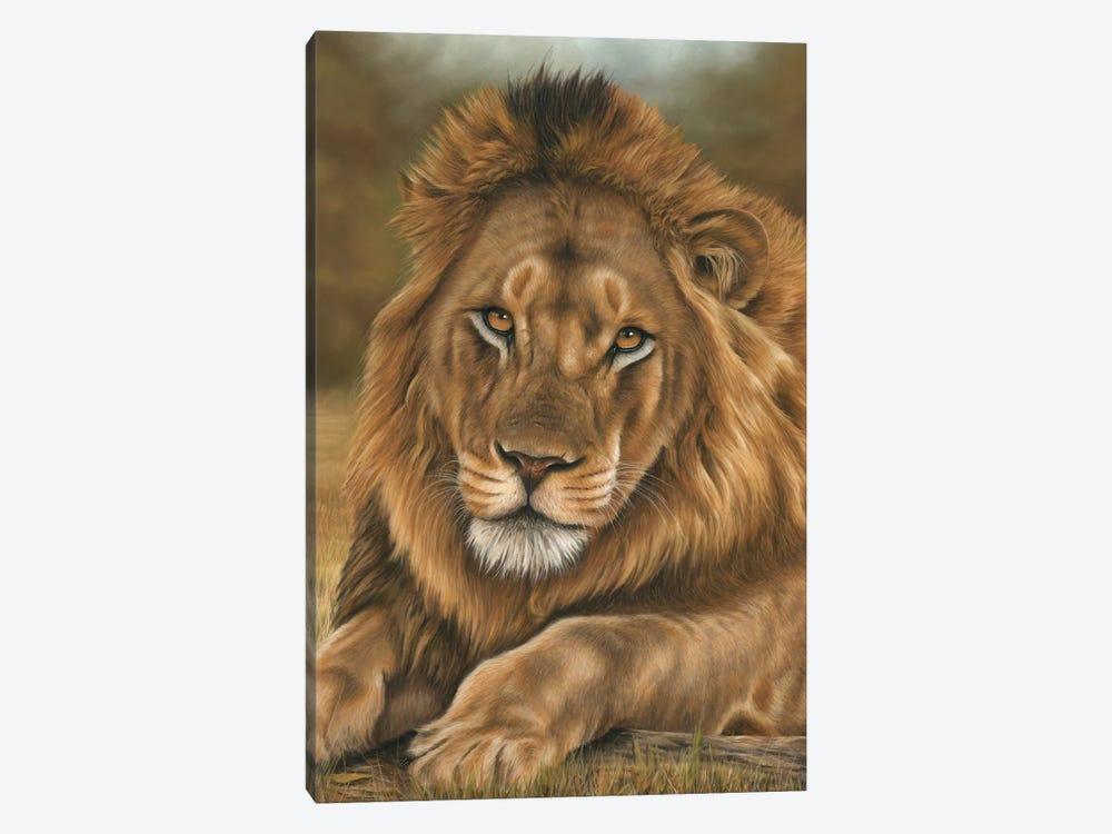 Lion by Richard Macwee 1-piece Canvas Print