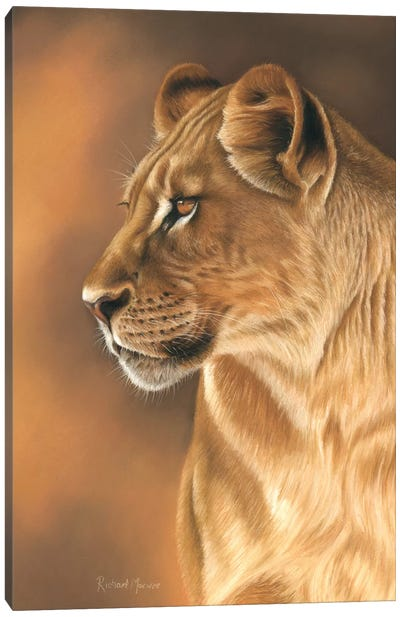 Lioness Portrait Canvas Art Print
