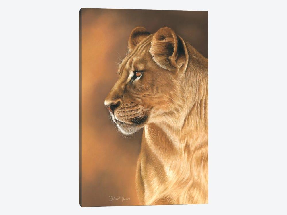 Lioness Portrait by Richard Macwee 1-piece Canvas Art