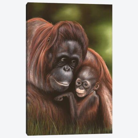Orangutan Canvas Print #RMC36} by Richard Macwee Art Print