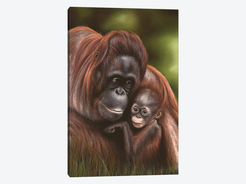 Orangutan by Richard Macwee 1-piece Art Print