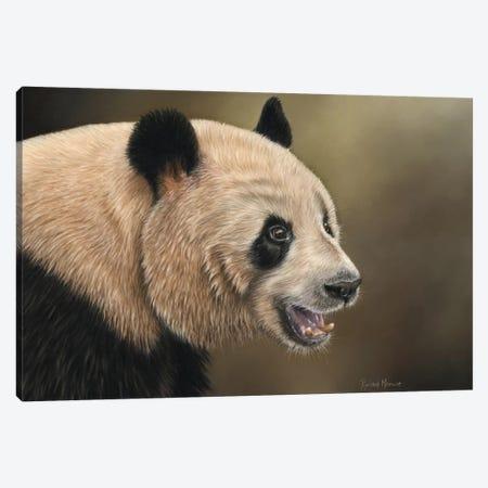 Panda Canvas Print #RMC37} by Richard Macwee Canvas Art Print