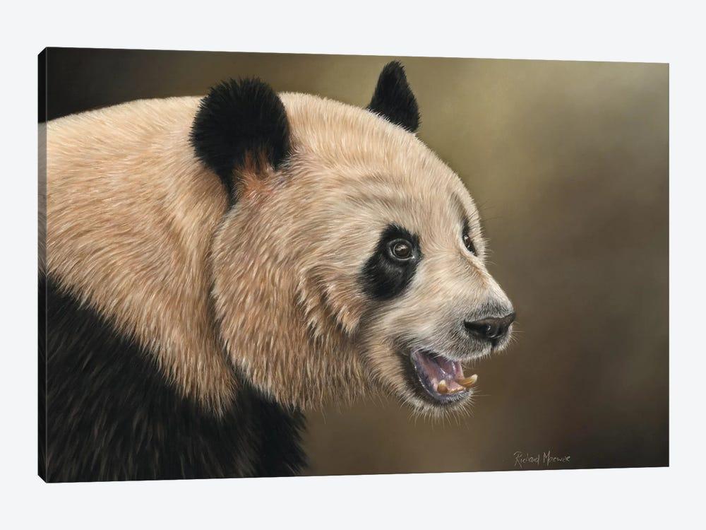 Panda by Richard Macwee 1-piece Canvas Artwork