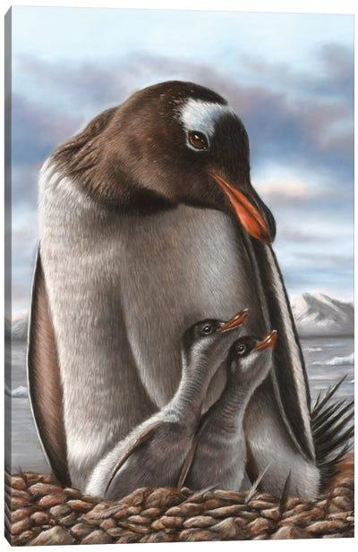Penguin Canvas Art Print