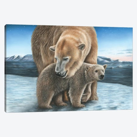Polar Bear Canvas Print #RMC40} by Richard Macwee Art Print