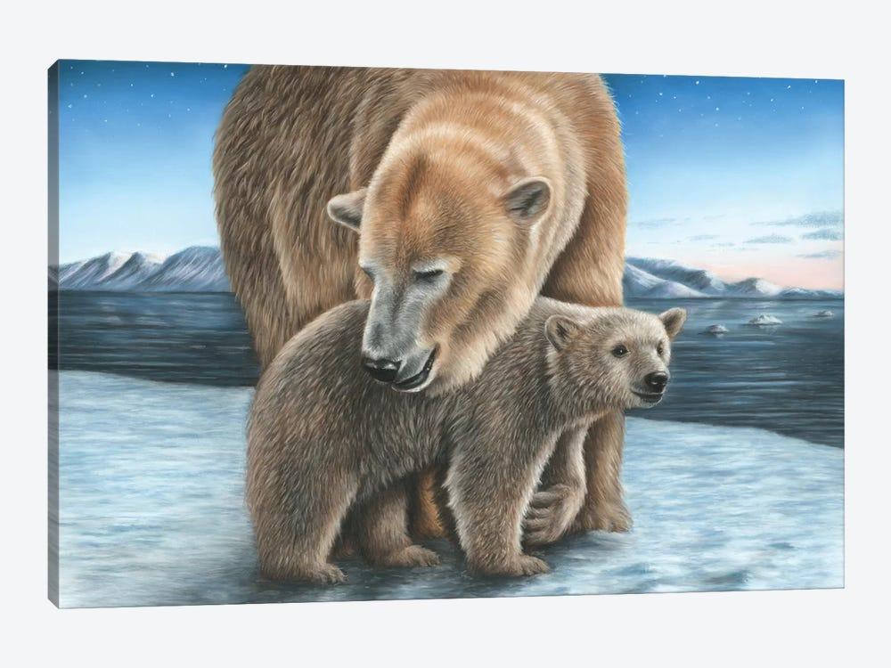 Polar Bear by Richard Macwee 1-piece Canvas Art