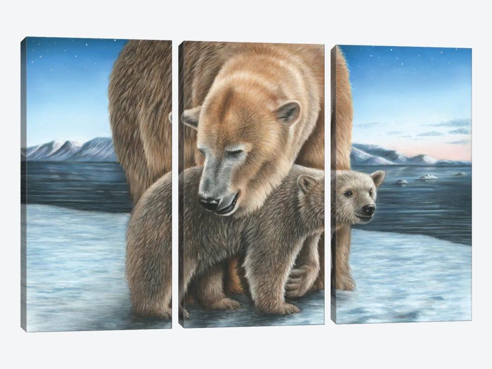Polar Bear by Richard Macwee 3-piece Canvas Art