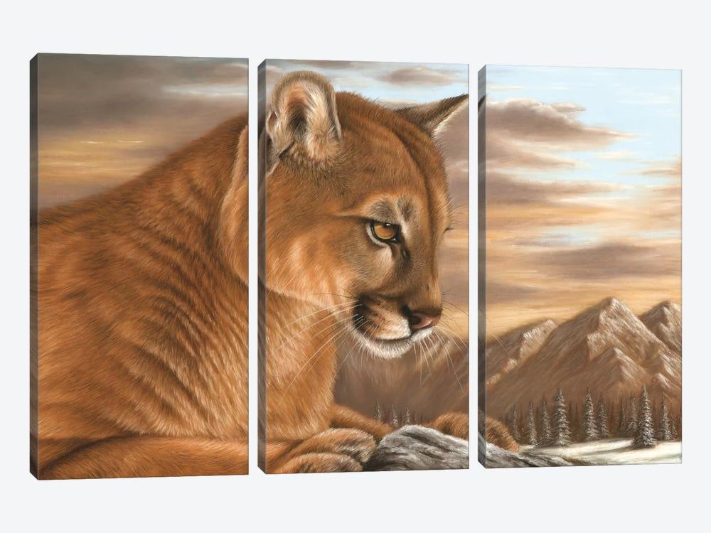 Puma by Richard Macwee 3-piece Canvas Print
