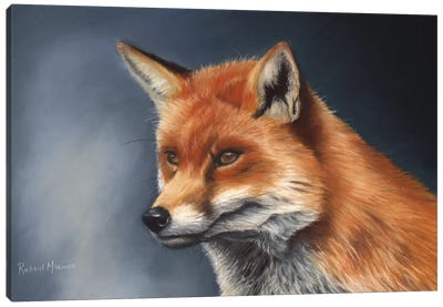Red Fox Canvas Art Print